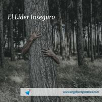 el lider inseguro id