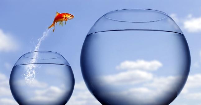 5 pasos para crecimiento personal